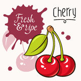 Cherry concept Stock Photos