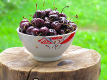 Cherry in a cup. On a stump Royalty Free Stock Photo