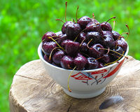 Cherry in a cup. On a stump Stock Photos