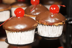 Cherry Cupcakes Stock Photography