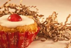 Cherry cupcakes Stock Image