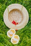 Cherry and cuted citrus fruits with straw hat lying on the grass outdoors. Picnic on nature in the park close up healthy food, royalty free stock photo