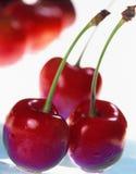 cherry czerwony Fotografia Stock