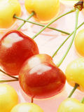 cherry czerwony Zdjęcie Stock