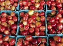 cherry dżdżysta Zdjęcie Royalty Free