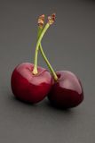 Cherry on dark Stock Image