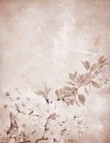 Cherry dekorerad brevpappertappning arkivbild