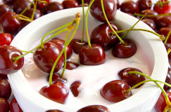 Cherry dessert. A dessert with fresh cherries in a white bowl royalty free stock images