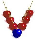 cherry different leader απεικόνιση αποθεμάτων