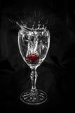 Cherry Dropping in wijnglas stock fotografie