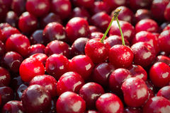 Cherry with drops Stock Image