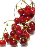 Cherry in drops of water. Royalty Free Stock Photo