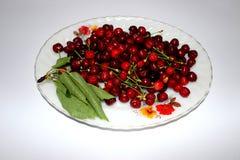 Cherry en för platta white sött Arkivbilder