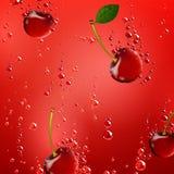 Cherry Falling en líquido ilustración del vector