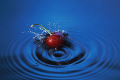 Cherry falls in water. Cherry falls deeply under water with a splash Royalty Free Stock Photos