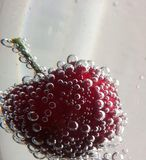 Cherry fizz Stock Images