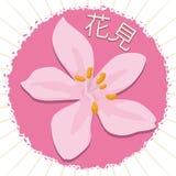 Cherry Flower über gerundetem Aufkleber mit den Blumenblättern für Japaner Hanami, Vektor-Illustration stock abbildung