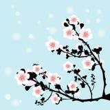 Cherry flower. And blue skay vector illustration