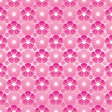 Cherry flower modern symmetry full page seamless pattern. This illustration is design and drawing pink color symmetry cherries flower blossoming in seamless Stock Photos