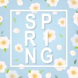 Cherry Flower Spring Banner Immagine Stock