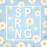 Cherry Flower Spring Banner. With Gradient Mesh, Vector Illustration royalty free illustration