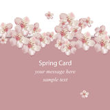 Cherry flowers blossom spring card Vector illustration. Delicate decor for anniversary, wedding, birthday, events. Royalty Free Stock Images
