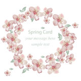 Cherry flowers blossom wreath card. Vector illustration. Delicate decor for anniversary, wedding, birthday, events. Royalty Free Stock Images