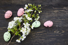 Cherry flowers and Easter eggs Stock Photo