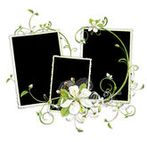 Cherry flowers frame Stock Images
