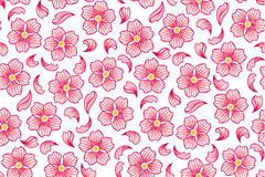 Cherry flowers pattern. Vector background with cherry flowers, seamless pattern Royalty Free Stock Images