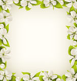 Cherry flowers with pearl beads like frame on beige Stock Photo