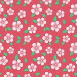 Cherry Flowers Seamless Pattern Imagem de Stock