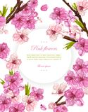 Cherry flowers Vector. Spring card backgrounds vector illustration