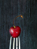 Cherry on a fork Royalty Free Stock Photos