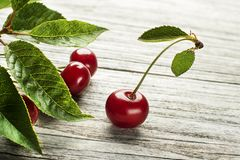 Cherry fruit close up royalty free stock photography