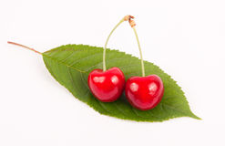 Cherry fruit. With leaf isolated on white Royalty Free Stock Image