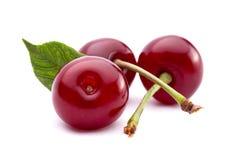 Cherry fruit closeup. Isolated on white background stock photos