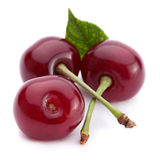 Cherry fruit closeup Stock Image