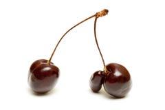 Cherry fruit fused Stock Photography