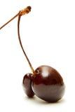 Cherry fruit fused Stock Photo