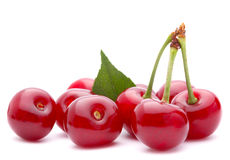Cherry fruit group Stock Images