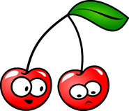 Cherry, Fruit, Leaf, Stem, Red Royalty Free Stock Image