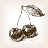 Cherry fruit sketch vector illustration Royalty Free Stock Photography