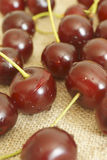 Cherry. The fruit of cherry wood Royalty Free Stock Images