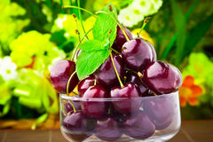 Cherry fruits in glass goblet with mint leaf Royalty Free Stock Photography