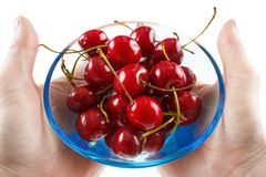 Cherry fruits. Hands holding a glass bowl with fresh cherry fruits Stock Photo