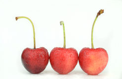 Cherry fruits Royalty Free Stock Images