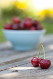 Cherry fuits outdoor Royalty Free Stock Photography