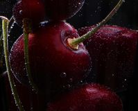 Cherry in a glass with bubbles royalty free stock photos