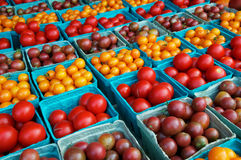 Cherry and grape tomatoes Royalty Free Stock Photography